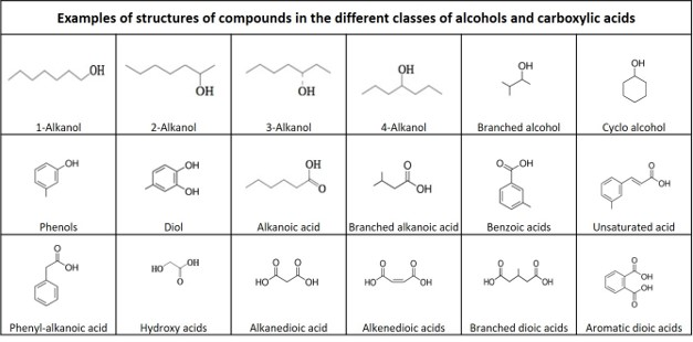 Molecular structure  alcohol acid